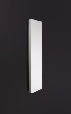 Grzejnik enix plain vertical vp11